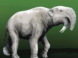 An artist's depiction of Deinotherium whose fossils were uncovered. Photos: express/Internet