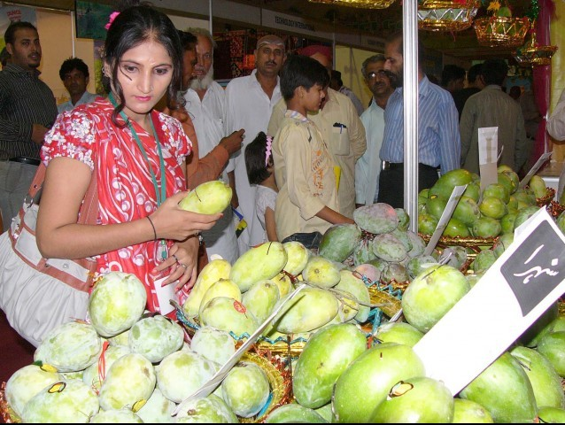 A woman inspects the different varieties of mangoes on display at a Mango festival in Hyderabad. PHOTO: SHAHID ALI/EXPRESS