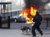 A policeman and his dog walk towards a burning car in central Birmingham, central England August 9, 2011. PHOTO: REUTERS