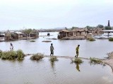 tando_allah_yar_flood-photo-app