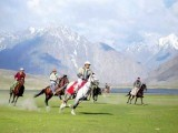 polo-photo-file-2