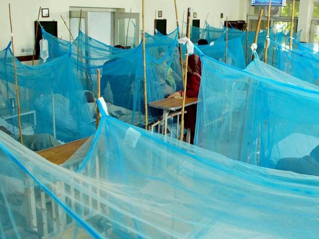 The toll dengue has taken on Lahore this year has been terrifying. PHOTO: INP/FILE