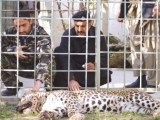 zoo-photo-muhammad-sadaqat