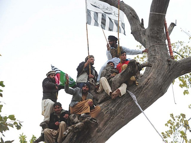 JUD activists climb a tree to get a better view of the speakers. PHOTO: AFP