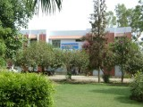 sahiwal-medical-college