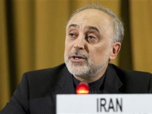 Iran's Foreign Minister Ali Akbar Salehi addresses the main UN Disarmament conference at the end of his two-day visit at the United Nations in Geneva, February 28, 2012. PHOTO: REUTERS