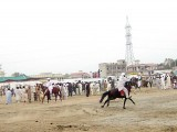 The annual festival is regarded as the soul of cultural life of Dera Ismail Khan. PHOTO: ZULFIQAR ALI
