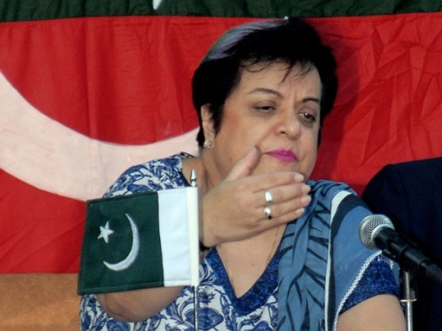PTI senior leader Dr Shireen Mazari demanded that the government take parliament into confidence by sharing the contents of the Zardari-Singh meeting. PHOTO: NNI/FILE