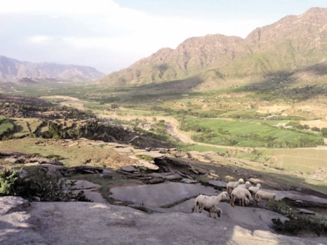 Natives of this lush-green valley are typically herders, continuing the profession of their ancestors. PHOTO: FAZAL KHALIQ/EXPRESS