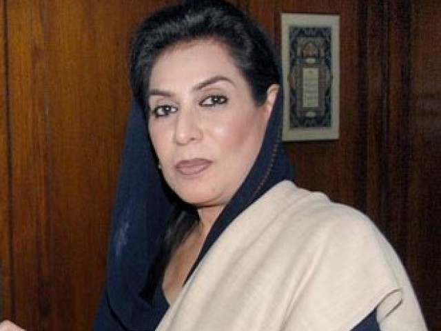 Dr Fehmida Mirza says she needs to consult and discuss the matter before making any decision. PHOTO: PID/ FILE