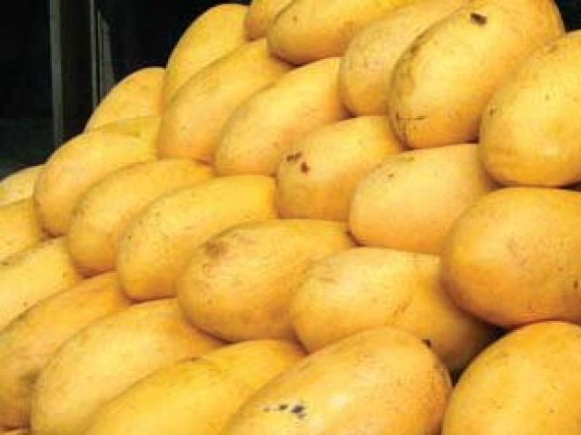 Production is likely to stand around 1.2 million tons of mangoes against the production of 1.7 million tons recorded during the previous season. PHOTO: APP