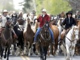 Renee Mantle leads a herd of wild horses during Montana Horses' annual horse drive outside Three Forks, Montana, May 5, 2012. PHOTO: REUTERS