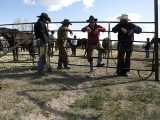 Wrangler wait to drive a herd of horses during Montana Horses' annual horse drive outside Three Forks, Montana, May 6, 2012. PHOTO: REUTERS