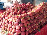 strawberry-photo-fazal-khaliq-the-express-tribune