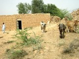 Riaz's family lives in a small mud house located on the top of Agaz Khel mountains in Pahar Pur tehsil, near Dera Ismail Khan. PHOTO: ZULFIQAR ALI/EXPRESS