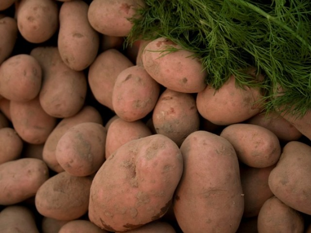 The smell of a baked potato can actually make us feel happier, scientists say.
