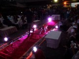 The pets bounded down the runway under the glare of the stage lights . PHOTO: ATHAR KHAN/ THE EXPRESS TRIBUNE