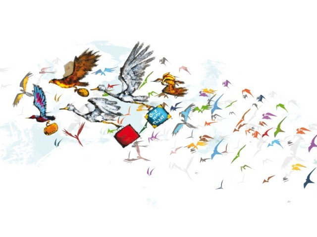 """Birds migrate to friendly environments and unfortunately we no longer offer such an environment,"" says Wild life conservator ILLUSTRATION: JAMAL KHURSHID"
