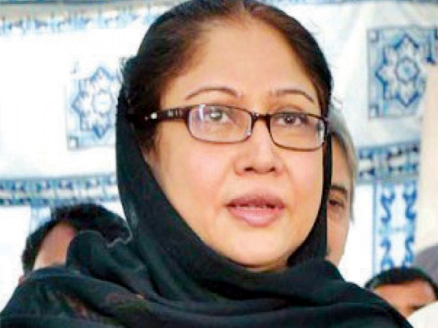 The petitioner accused MNA Faryal Talpur and PPP of using state resources. PHOTO: FILE