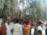 People make a mannat with each red band they tie to the tree. On its fulfillment, they return to distribute charity.