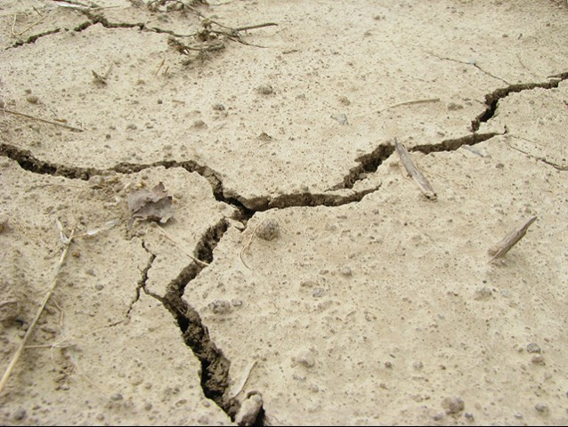 Earthquake jolts parts of Swat, Chitral