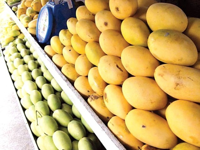 Pakistan's mangoes can capture a large portion of the Mauritius' market in the next five years due to its unique variety of tastes and price competitiveness. PHOTO: FILE