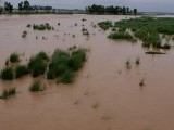floods-monsoon-sambrial-puresh-sialkot-photo-inp-2