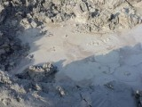 Bubbling mud pits on the new Island. PHOTO: Yasir Ahmed Durrani