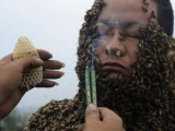 An apprentice of beekeeper She Ping uses burning incense to drive off bees from She's face as he assists covering She's body with bees in order to break a world record in Chongqing Municipality, April 18, 2012. She Ping, 32, broke the world record on Wednesday by covering his body with 33.1 kilograms of bees (about 331,000 bees). PHOTO: REUTERS