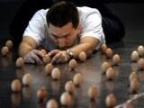 Brian Spotts of the US works to balance 439 eggs on their ends in Melbourne September 14, 2005. Spotts travelled to Melbourne to attempt a new world egg balancing record which currently stands at 420 eggs. PHOTO: REUTERS