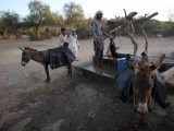 thar-water-drought-express-athar-khan