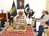 pm_dg-_iaeacall-yukiyo-amino-iaea-nawaz-sharif-pakistan-photo-pid