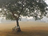 The lone seat: A misty morning in Model Town Park, Lahore. PHOTO: FATIMA MIR