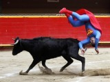 It's a bird, it's a plane, it's Superman being attacked by a bull. Pedro Sanchez, a dwarf bullfighter dressed in a Superman costume, from the Superlandia group flips near a calf at the Plaza de Toros La Macarena in Medellin February 19, 2012. PHOTO: REUTERS