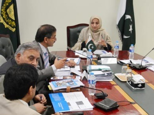 Saira Afzal Tarar chairing a meeting on Ebola preparedness on Wednesday, October 15, 2014. PHOTO: PID