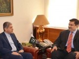 Federal Minister for Commerce Khurram Dastgir Khan in a meeting with the Minister for Economic Affairs and Finance of Iran Dr Ali Taieb Nia in Islamabad on december 9, 2014. PHOTO: PID