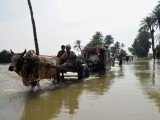 floods-pakistan-afp-5