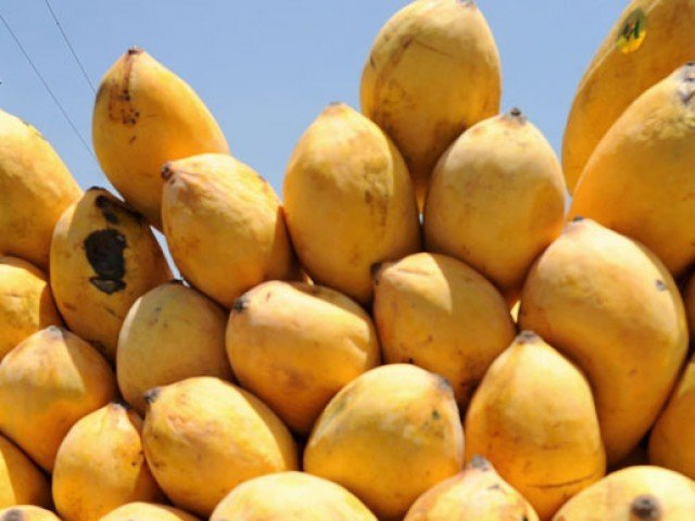Roundabout 3 5 Per Kg Is The Price Of Stani Mangoes In Diffe Cities