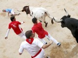 Runners lead a Jose Escolar fighting bull (R) at the entrance to the bullring during the fifth running of the bulls of the San Fermin festival in Pamplona, northern Spain, July 11, 2015. PHOTO : REUTERS