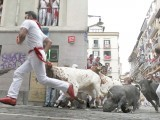 A Jose Escolar fighting bull slips at Estafeta corner during the fifth running of the bulls of the San Fermin festival in Pamplona, northern Spain, July 11, 2015. PHOTO : REUTERS