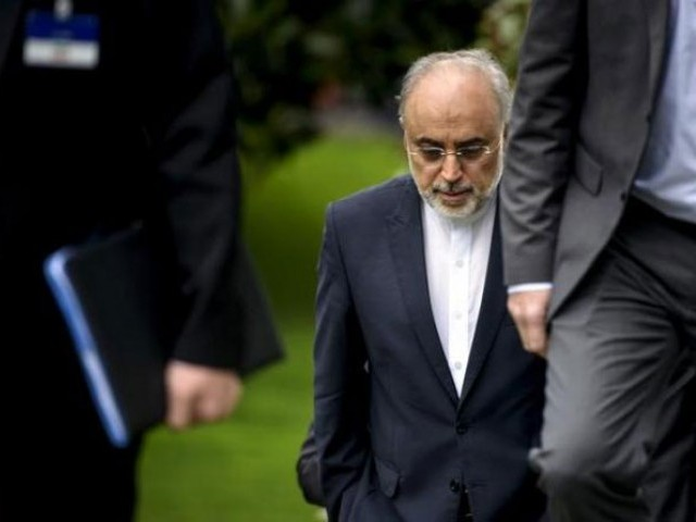 The Head of the Iranian Atomic Energy Organization Ali Akbar Salehi walks through a garden at the Beau Rivage Palace Hotel during an extended round of talks in Lausanne, April 2, 2015. PHOTO: REUTERS