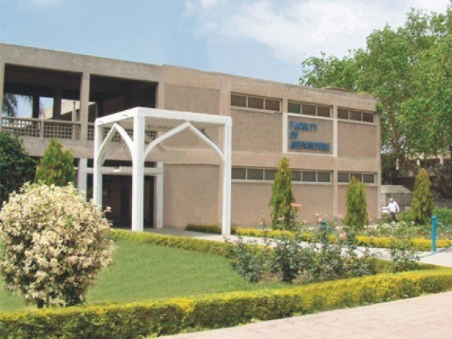University of Agriculture in Faisalabad. PHOTO: UAF.EDU.PK