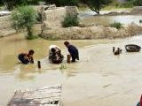 floods-2015-dera-ghazi-khan-photo-online-2-2-3-2-3-3