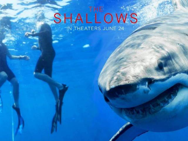 The Shallows movie poster.