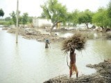 Dera Ghazi Khan, June 2011. pHOTO: EXPRESS