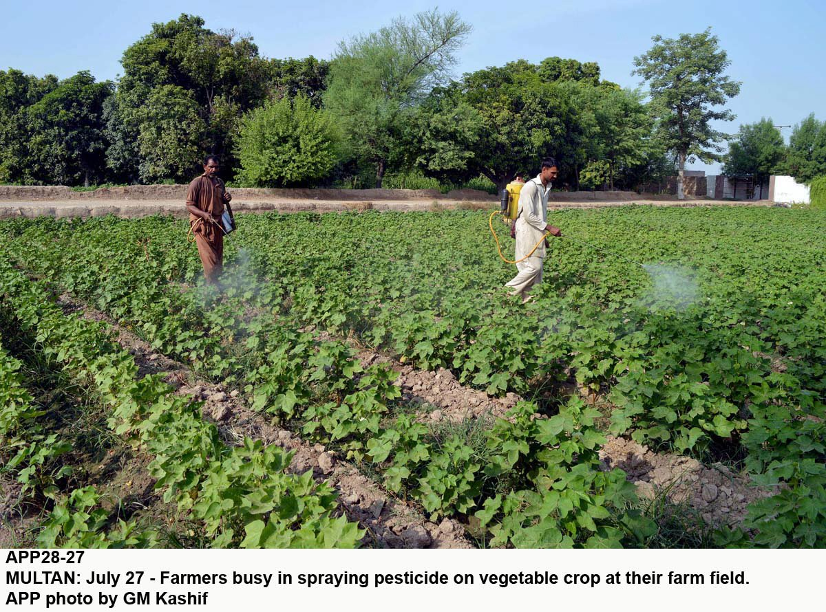 lhr_multan_agr_farmer_pestcide_app-2-2-2-4-2-2-2