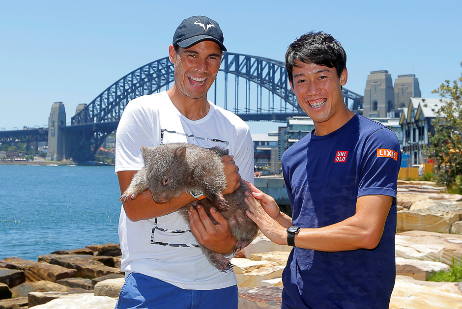 Tennis players Rafael Nadal (L) of Spain and Kei Nishikori of Japan cuddle up to Lola, an Australian wombat, in Sydney, before the Australian Open tennis tournament in Melbourne begins January 16. PHOTO: REUTERS
