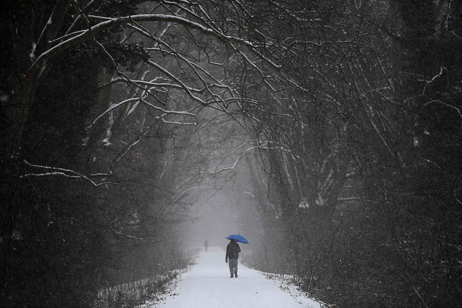 A man walks under snowfall in a forest in Strasbourg, eastern France as a cold wave hits most parts of Europe. PHOTO: AFP