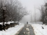 2_zkn_after-heavy-snow-in-valley-man-walks-alone-on-the-streets-at-shopian_kashmir-snow-2-2
