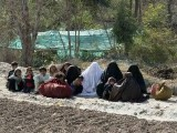 women-fata-photo-reuters-2-2-2-2-2-2